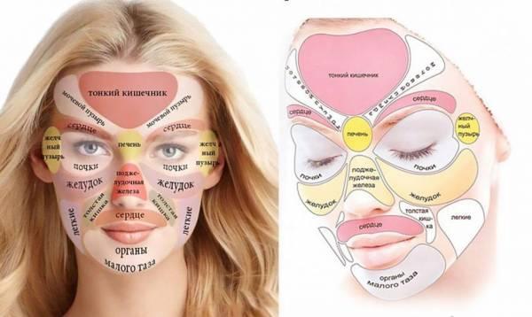 Картинки по запросу Эта китайская «карта лица» покажет ваши проблемы со здоровьем!