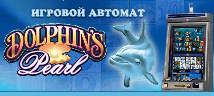 А дельфины в казино вулкан игровые автоматы онлайн бесплатно 21